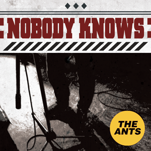 Nobody Knows THE ANTS